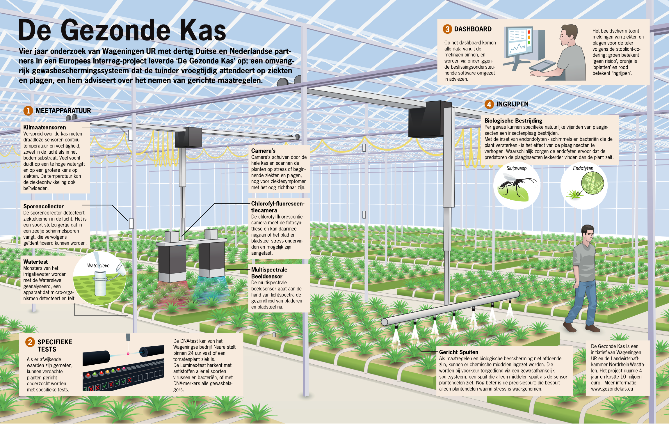 infographic de gezonde kas wageningen world